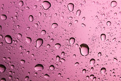 Water drop on pink background. Royalty Free Stock Photo