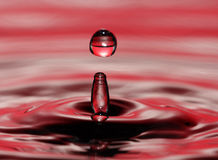 Water drop. A drop of water in a pool Stock Photos