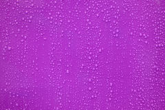 Water drop on purple background. Close up water drop on purple background Stock Photo