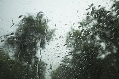 Water drop of rain on a glass, blurred tree in background, selective focus Stock Images
