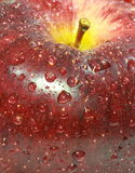 Water drop on red apple surface Royalty Free Stock Photos