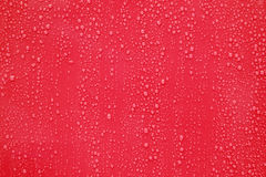 Water drop on red background. Stock Photography
