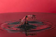 Water drop on the red background. Stock Image