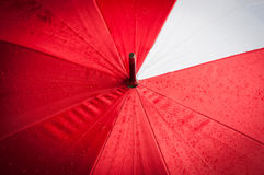 Water drop on red umbrella in rainy season. Stock Photo