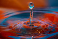 Water drop and ripples royalty free stock photos