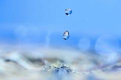 Water drop. Soft colors. Stock Photos