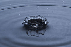 Water drop splash in crown shape Royalty Free Stock Images