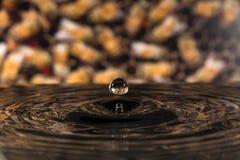 Water drop splash. On honey bee Stock Photos