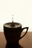 Water drop. Splashing in cup of tea. copy space. Motion and pause effect Stock Photography