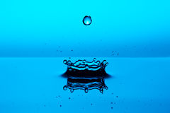 Water Drop. Studio shot of water splash isolated on blue background Stock Images