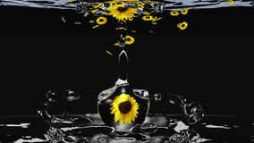 Water drop with sunflower. Sunflower in a water drop drops in water. 3d illustration stock illustration