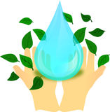 Water drop to human hand and green leaf Royalty Free Stock Image