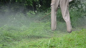 Water drop wet grass cut. Water rain drops rise from man with trimmer cutting wet high grass on rural road after rain stock video footage