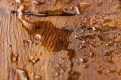 Water drop on wood Royalty Free Stock Photography