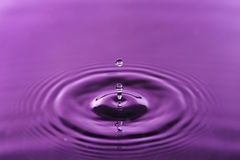 Water droplet Royalty Free Stock Photos