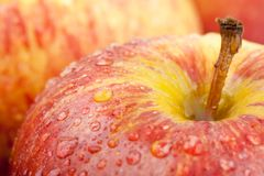 Water droplet on Gala apple Royalty Free Stock Photos