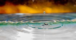 Water Droplet Landing In Water Royalty Free Stock Photography