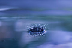 Water droplet ring splash. Perfect ring splash from a falling drop of water royalty free stock photography