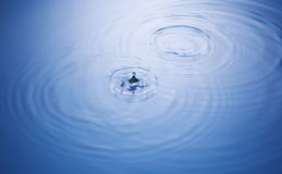 Water Droplet and Ripples Royalty Free Stock Photography