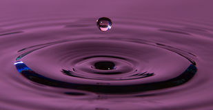 Water droplet in a waterbath. Purple water droplet in a waterbath taken with a nikon Royalty Free Stock Photography