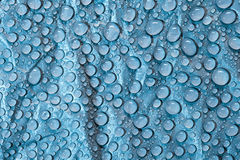 Water droplets Royalty Free Stock Photos