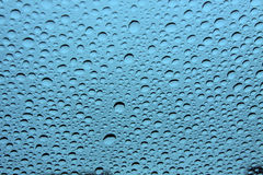 Water Droplets. On glass with blue background royalty free stock photography