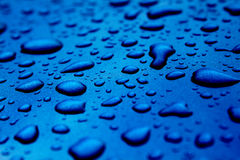 Free Water Droplets Royalty Free Stock Photo - 31936545