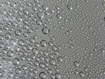 Water droplets (background). Steam condensed into water droplets on grey background Stock Image
