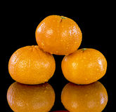 Water droplets decorate Tangerines arranged Royalty Free Stock Photography