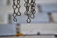 Water droplets royalty free stock image