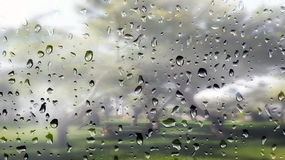 Water droplets on foggy window to a garden Royalty Free Stock Photos