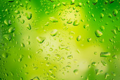Water droplets on glass. Bright green background Royalty Free Stock Image