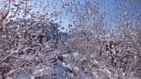 Water droplets Royalty Free Stock Images