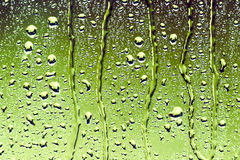 Water droplets on green glass Stock Images