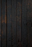 Water droplets on oil treated wooden planks. Treated oil wood planks with rain water drops on the surface creating a sombre dark background Stock Images