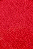 Water droplets on new red car background Royalty Free Stock Image