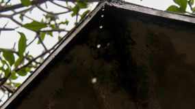 Water droplets from the roof of abandoned house. Taken in Taman Mini Indonesia Indah, East Jakarta stock photography