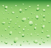 Water drops vector illustration
