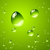 Water drops. Pure water drops over green background Royalty Free Stock Photo