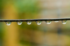 Water drops Royalty Free Stock Photography