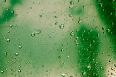 Water drops. On green background Royalty Free Stock Photo
