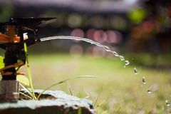 Water drops. In the garden Stock Image