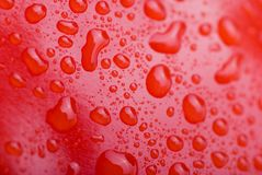 Water Drops. Red water drops background texture Stock Photography