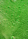 Water drops. On glass with green background Stock Photography
