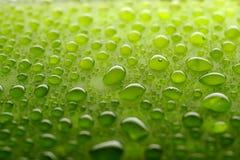 Water drops. Horizontal image of water drops Royalty Free Stock Photography