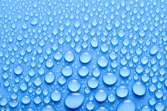 Water drops. On a blue background Stock Image