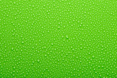Water drops. On a green background Stock Image