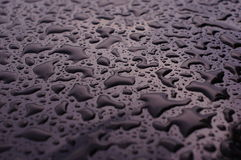 Water drops . Royalty Free Stock Images
