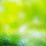 Water drops on abstract green background Royalty Free Stock Photography