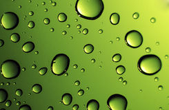 Water Drops against green background. Water droplets highlighted against a green background Royalty Free Stock Photography